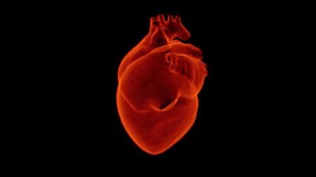 Causas del infarto de miocardio